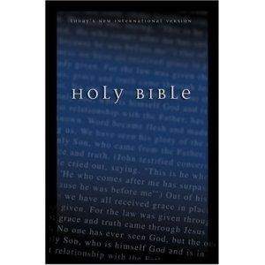 TNIV Bible